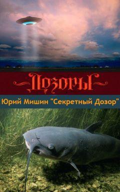 Юрий Мишин - Секретный Дозор