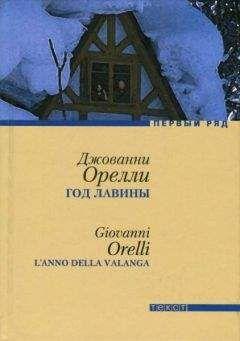Джованни Орелли - Год лавины