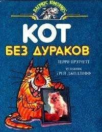 Terry Pratchett - Кот без дураков (пер. Е.Ланчиков)