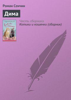 Роман Сенчин - Дима