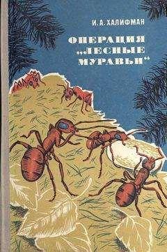 """Иосиф Халифман - Операция """"Лесные муравьи"""