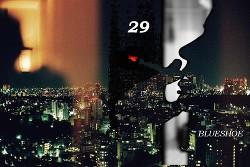 29 (СИ) -