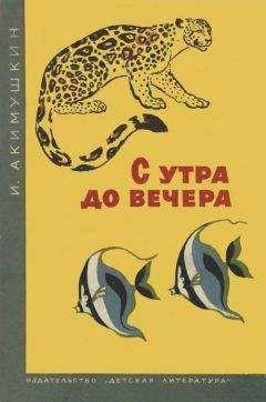 Игорь Акимушкин - С утра до вечера