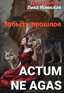 Actum ne agas. Забыть прошлое (СИ) - Ясинская Лика
