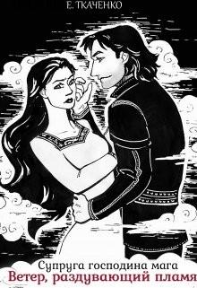 Супруга господина мага. Ветер, раздувающий пламя (СИ) - Ткаченко Евгения
