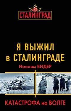 Иоахим Видер - Я выжил в Сталинграде. Катастрофа на Волге