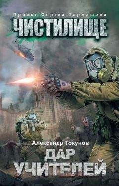 Александр Токунов - Чистилище. Дар учителей