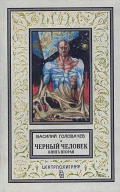 Василий Головачев - Черный человек. Книга 2