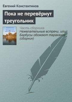 Евгений Константинов - Пока не перевёрнут треугольник