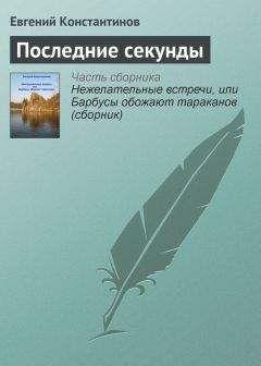 Евгений Константинов - Последние секунды